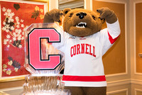 Cornell Club Volunteer Night 2016